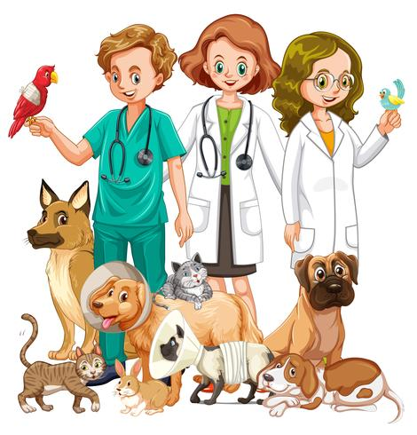 Vets and many type of animals.