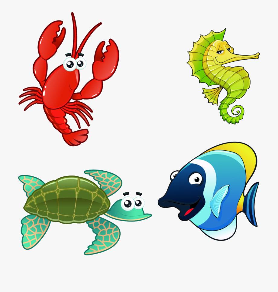 Aquatic Animal Marine Illustration Fish Aquarium.