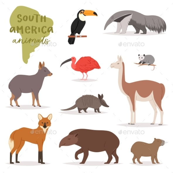 Animals in South America.