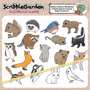 Habitat Animals: Woodlands of North America and Europe ClipArt.