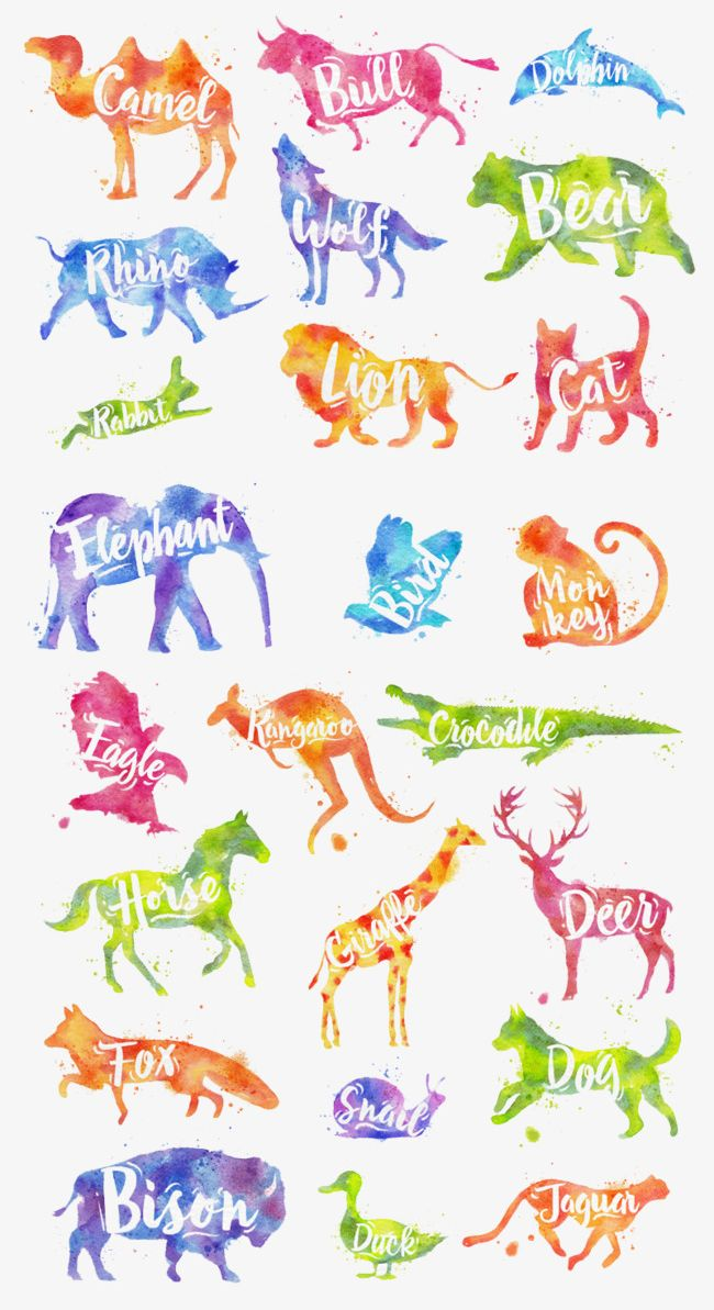 Animal World_ PNG, Clipart, Animal Clipart, Animal Clipart.