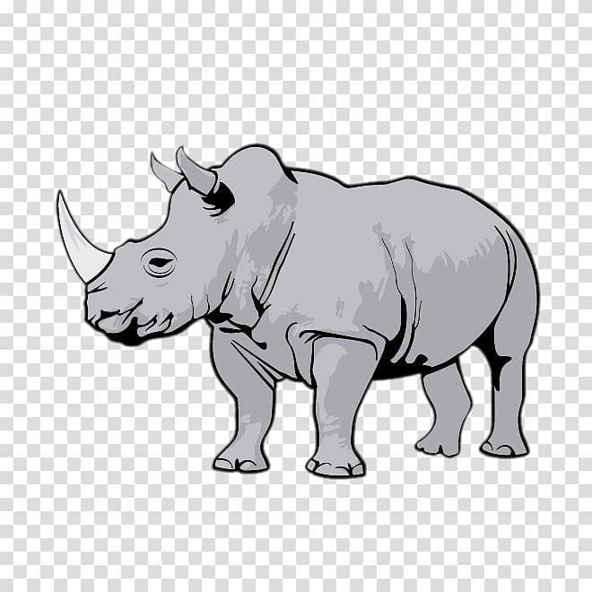 Gray rhinoceros , Rhinoceros , Rhino Creative transparent.