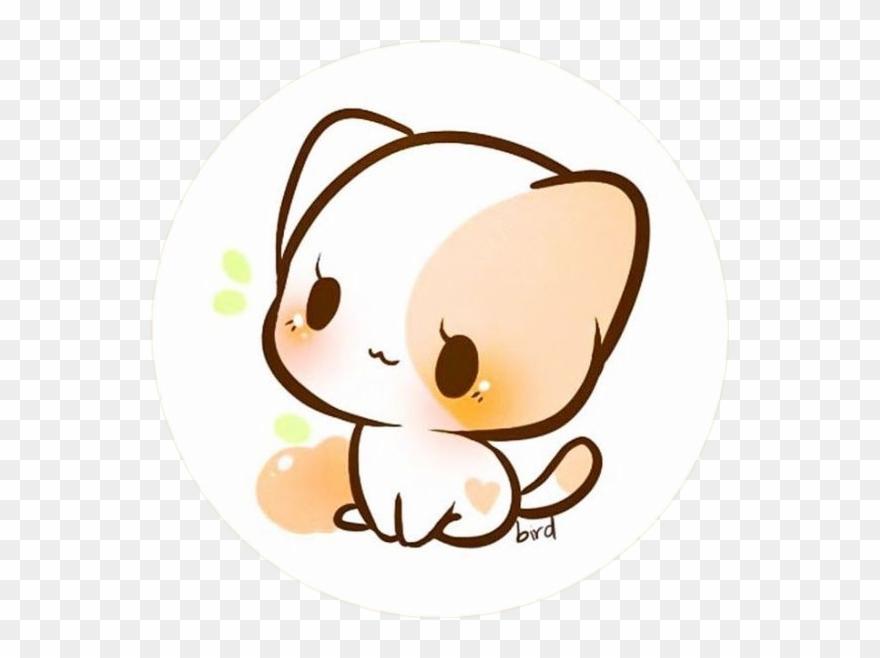 Kawaii Cat Gato Tierno Tumblr Japan.