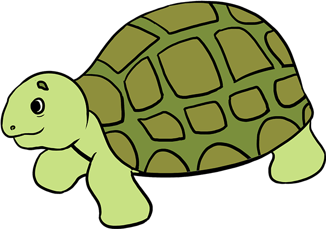 How To Draw Sea Turtle.