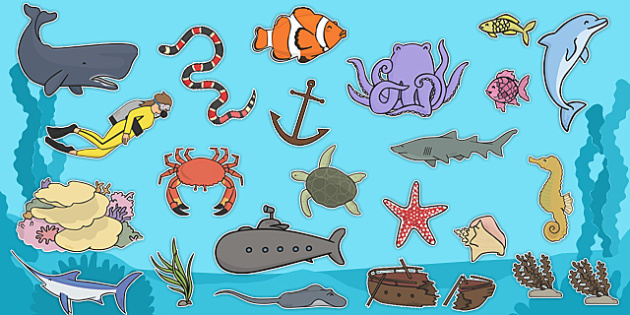 Under The Sea Clip Art Images.