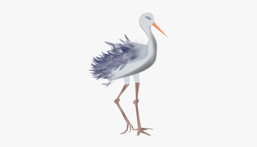 Young Stork Vector Image.
