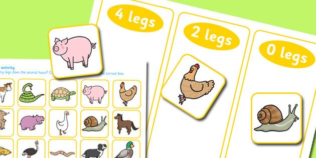 Animal Leg Sorting Activity.