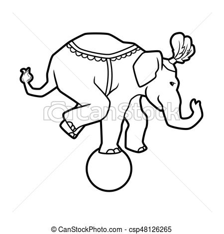 Circus trained wild animals performance isolated on white. elephant  balances on the ball.