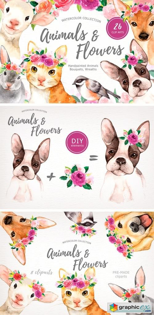 Animals & Flowers Watercolor Clipart » Free Download Vector.