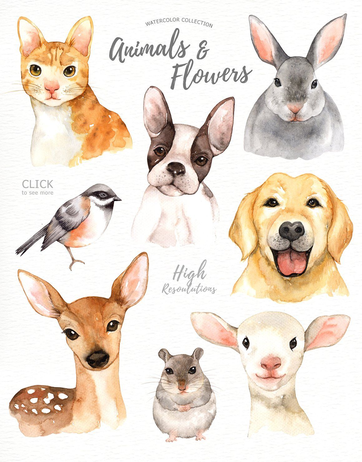 Animals & Flowers Watercolor Clipart by everysunsun on.