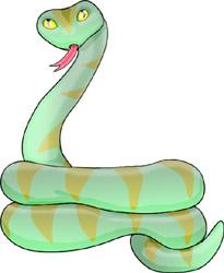 colegio pepe damaso: Animals Groups: Reptils.