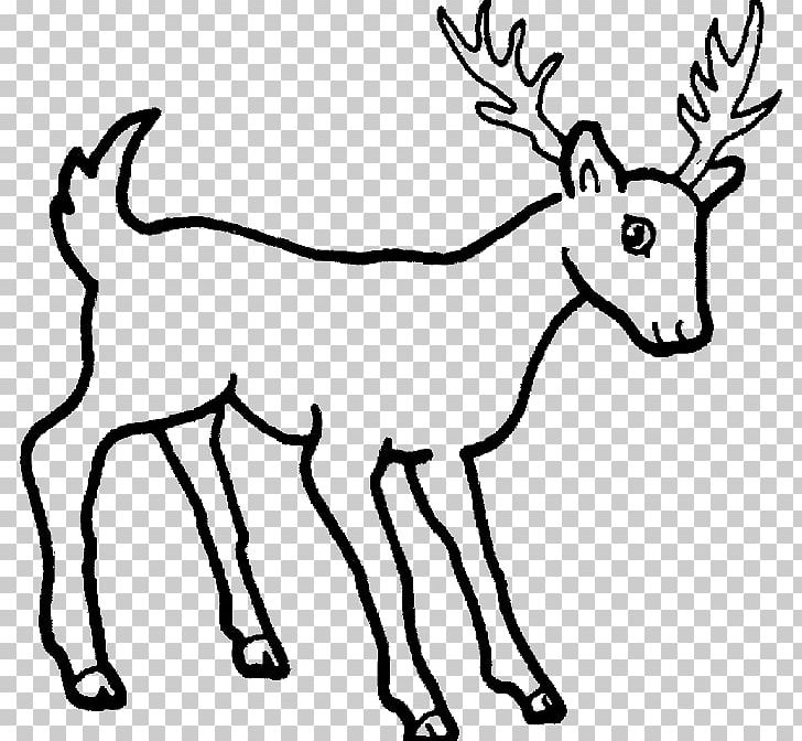 Drawing Dog Wildlife Pencil Sketch PNG, Clipart, Animal.
