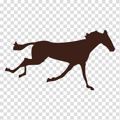 Horse Animation, sequence transparent background PNG clipart.