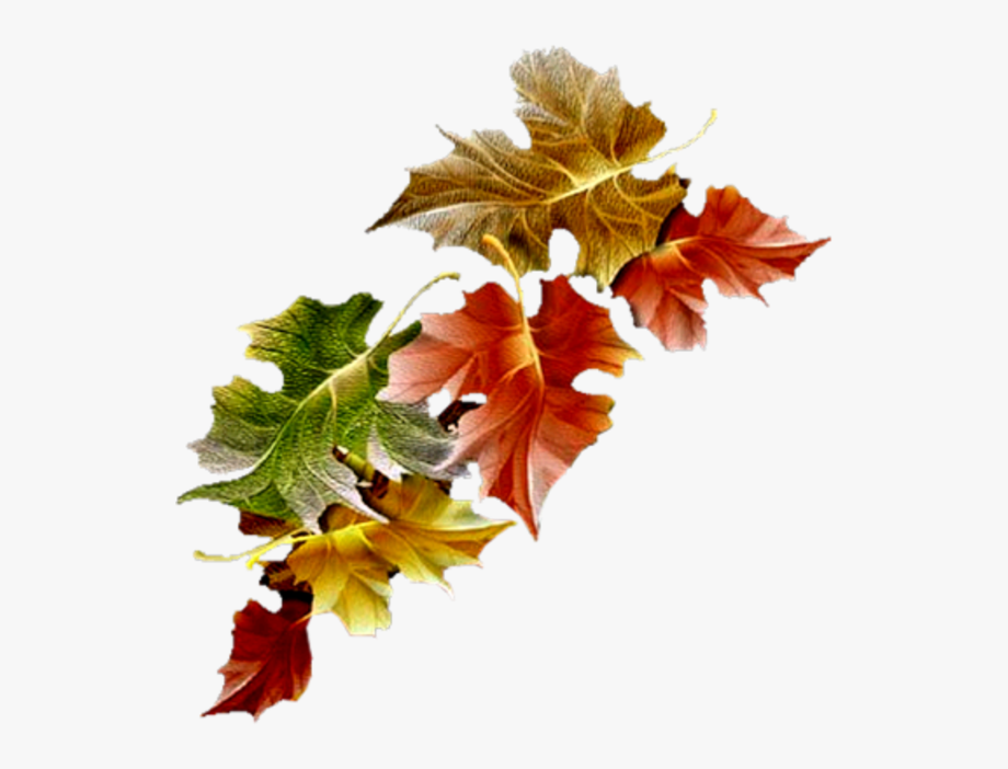 Free Animated Autumn Leaves Gifs Clipart , Png Download.