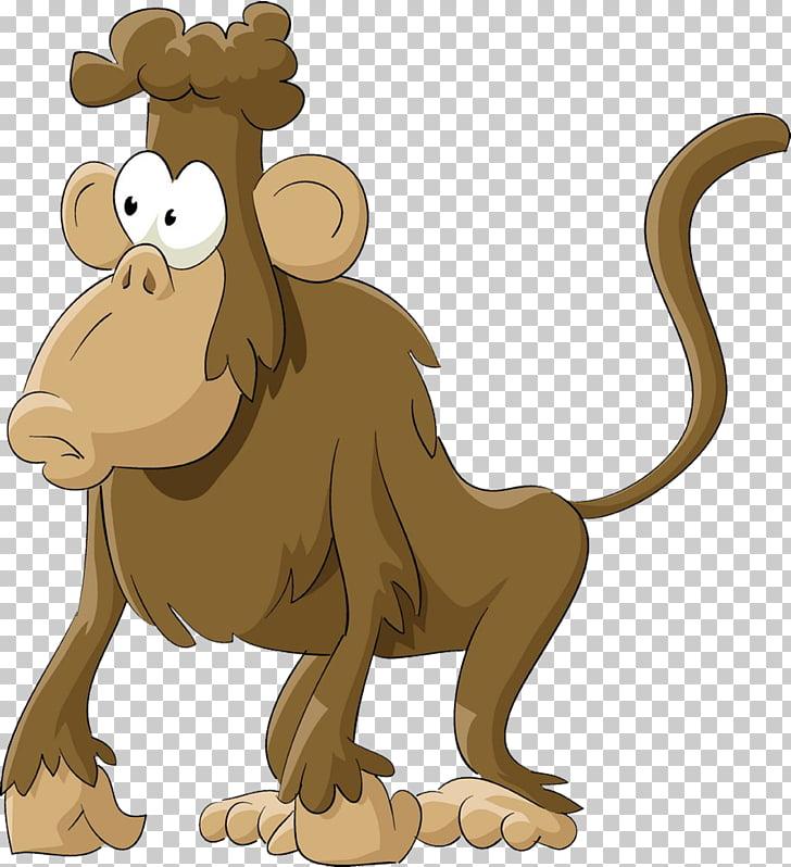 Mandrill Hamadryas baboon Monkey , Gorilla PNG clipart.
