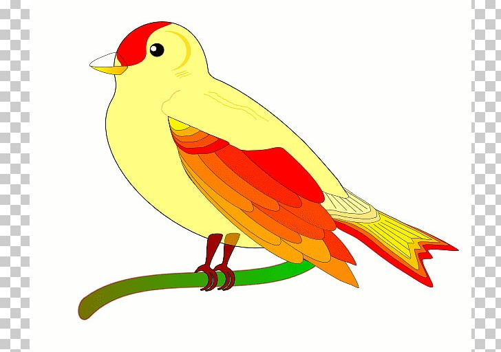 Bird Flight Animation PNG, Clipart, Animated Bird Cliparts.