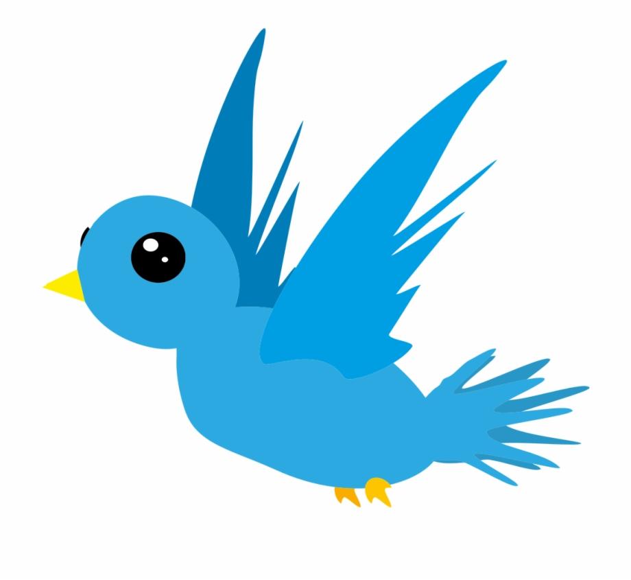 Bird Png Cartoon.