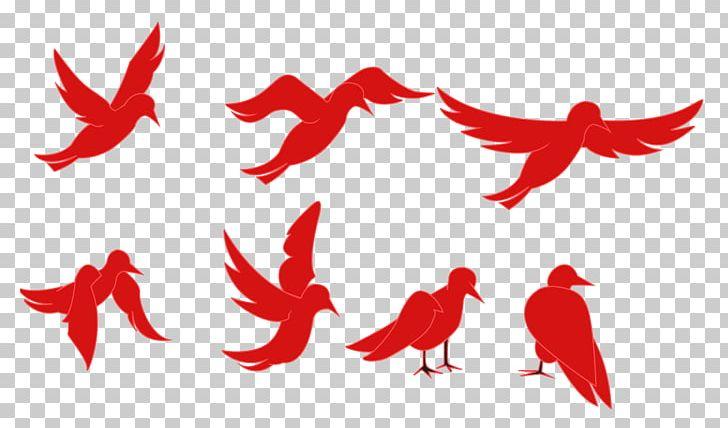 Tweety Bird Animation Cartoon PNG, Clipart, Animation, Beak, Bird.