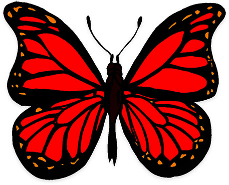 Butterfly Graphics.