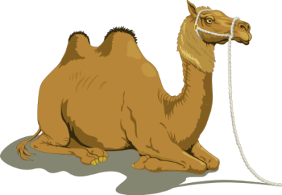 Free camels clipart free clipart images graphics animated s.