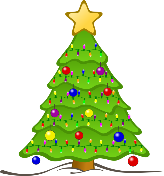 Fir,Pine Family,Christmas Decoration Vector Clipart.