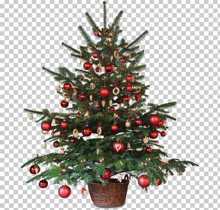 Christmas Decoration Animated Film Christmas Tree PNG, Clipart.