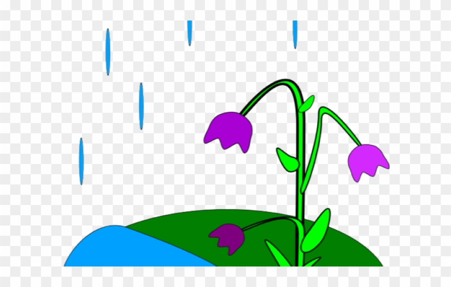 Animated Spring Clipart.