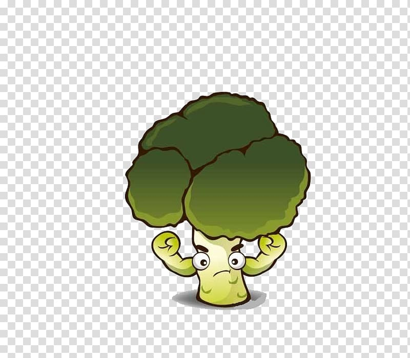 Broccoli Cartoon Vegetable, Cartoon cauliflower transparent.