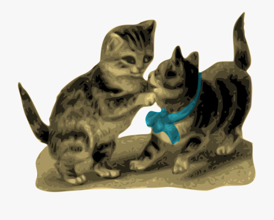 Kitten Clipart Cat Animation.
