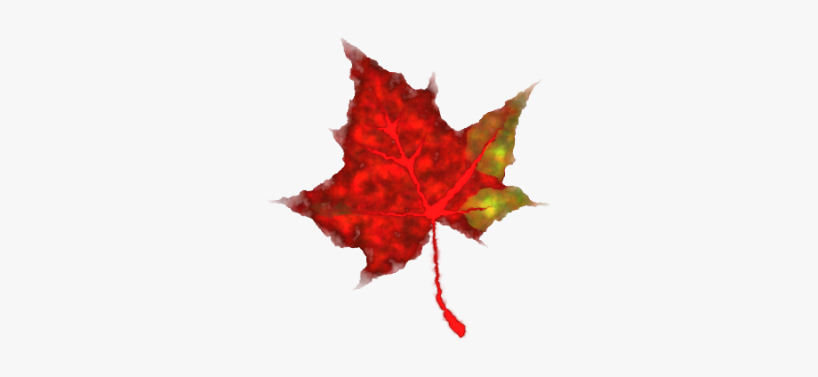 Animated Falling Leaves Clipart , Transparent Cartoon, Free.