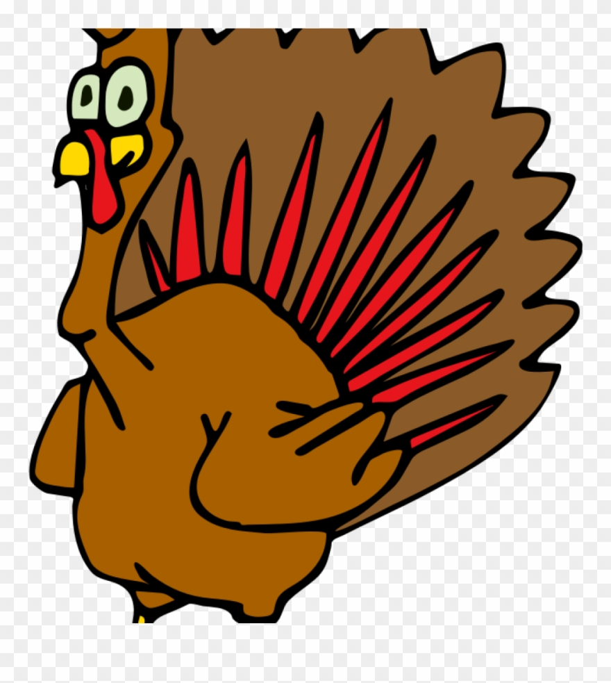 Turkey Animation Turkey Animation Download Turkey Clip.