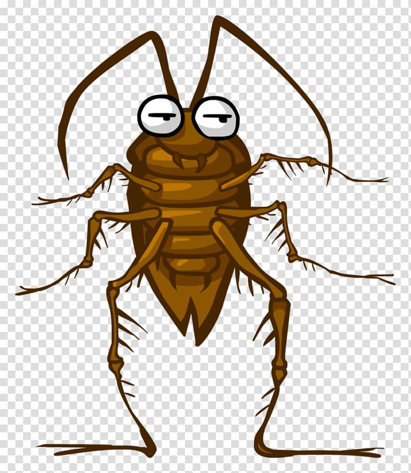 Cucaracha, cockroach cartoon transparent background PNG.