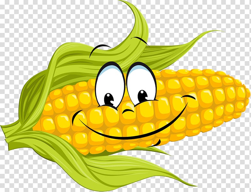 Corn on the cob Maize Sweet corn Food Vegetable, corn.