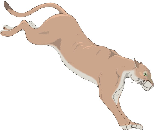 Free Cartoon Cougar, Download Free Clip Art, Free Clip Art on.