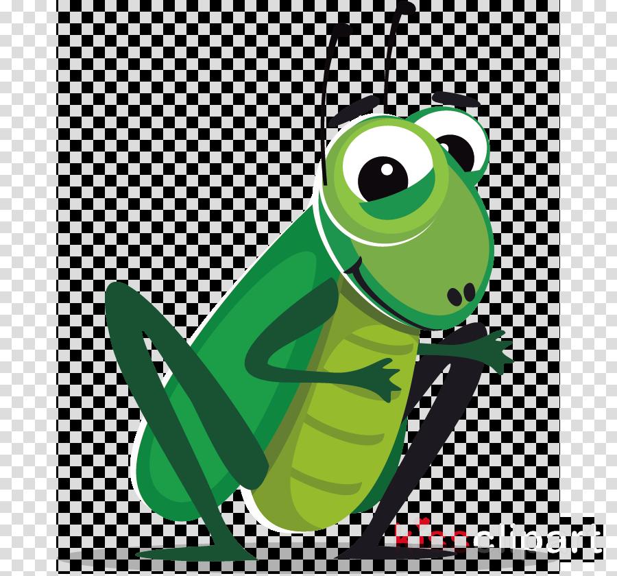 green insect cartoon grasshopper cricket.