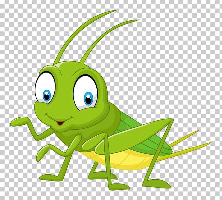 Cricket Cartoon PNG, Clipart, Amphibian, Artwork, Cartoon.