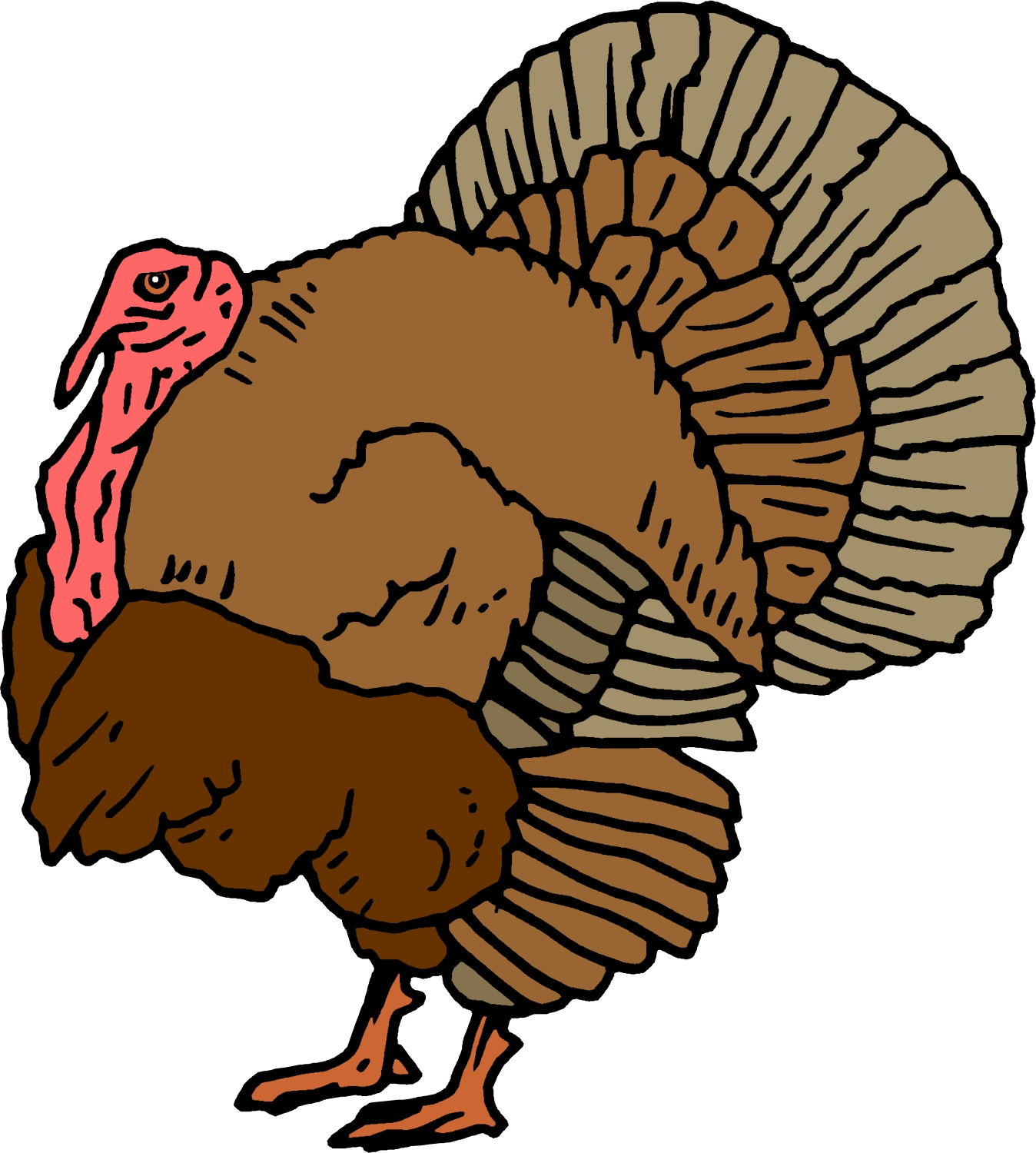 Free Animated Turkey Pictures, Download Free Clip Art, Free Clip Art.