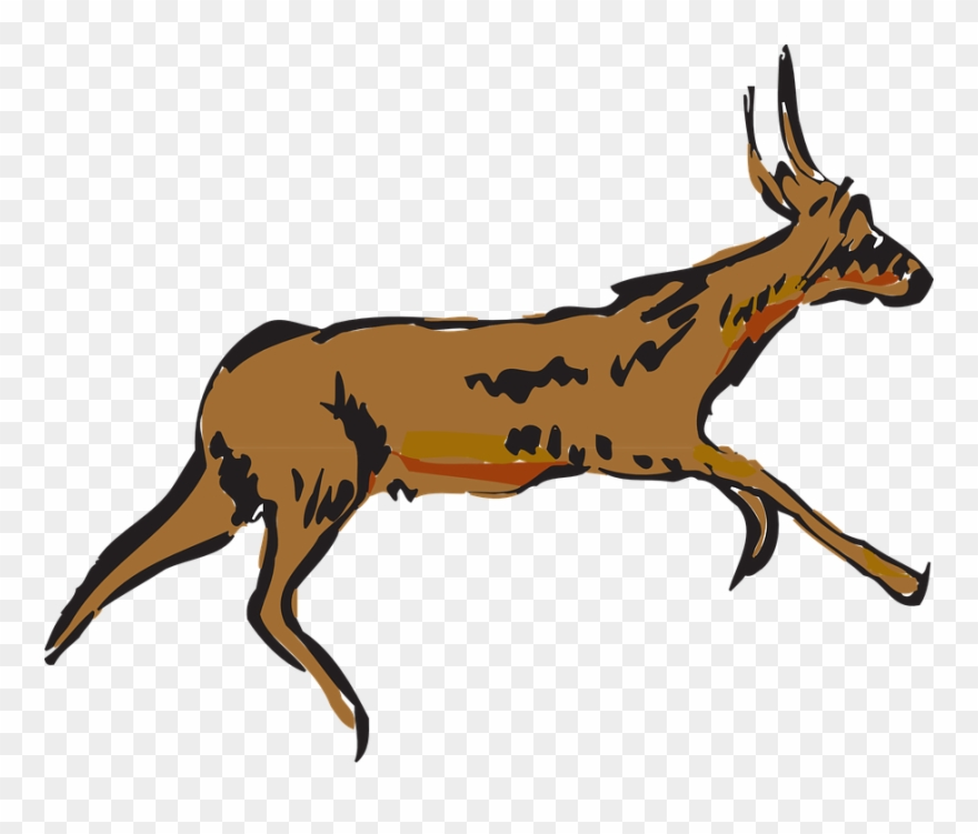 Pronghorn Antelope Clipart Animated.