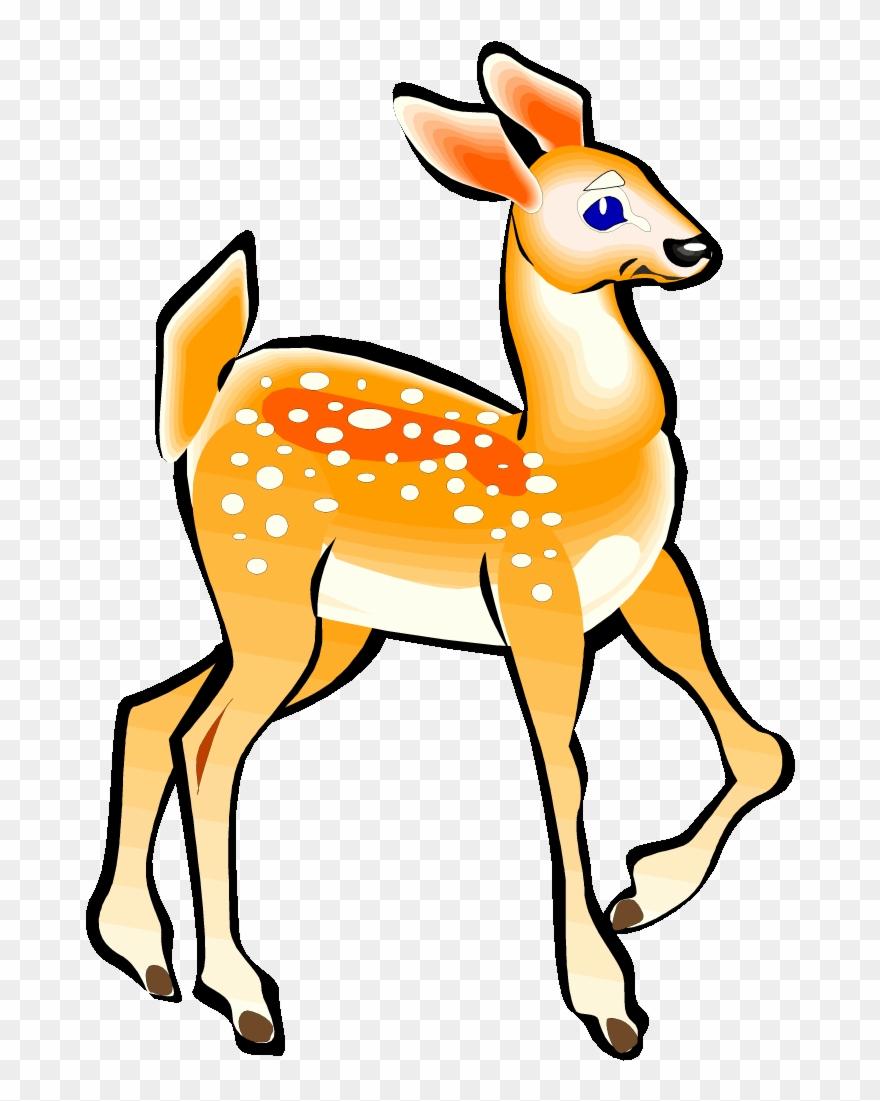 Free Deer Clipart Clipart Clipart.