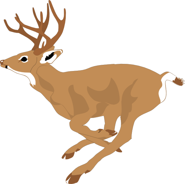 Free Baby Deer Clipart, Download Free Clip Art, Free Clip Art on.