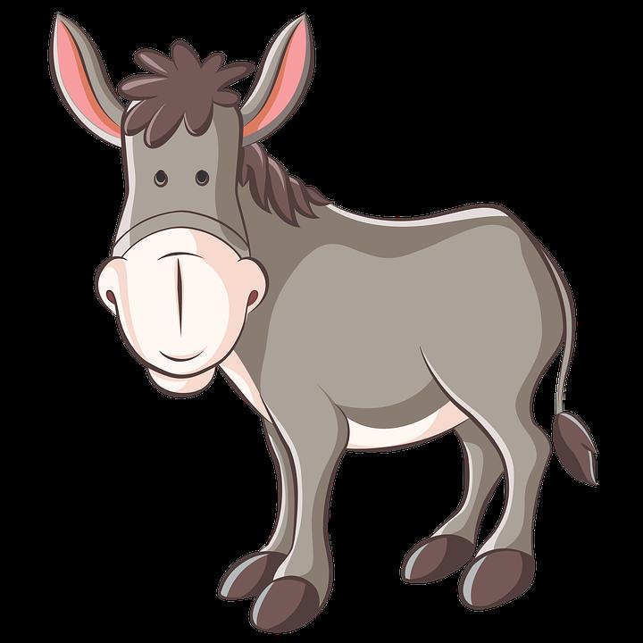 Donkey Ass Animation.