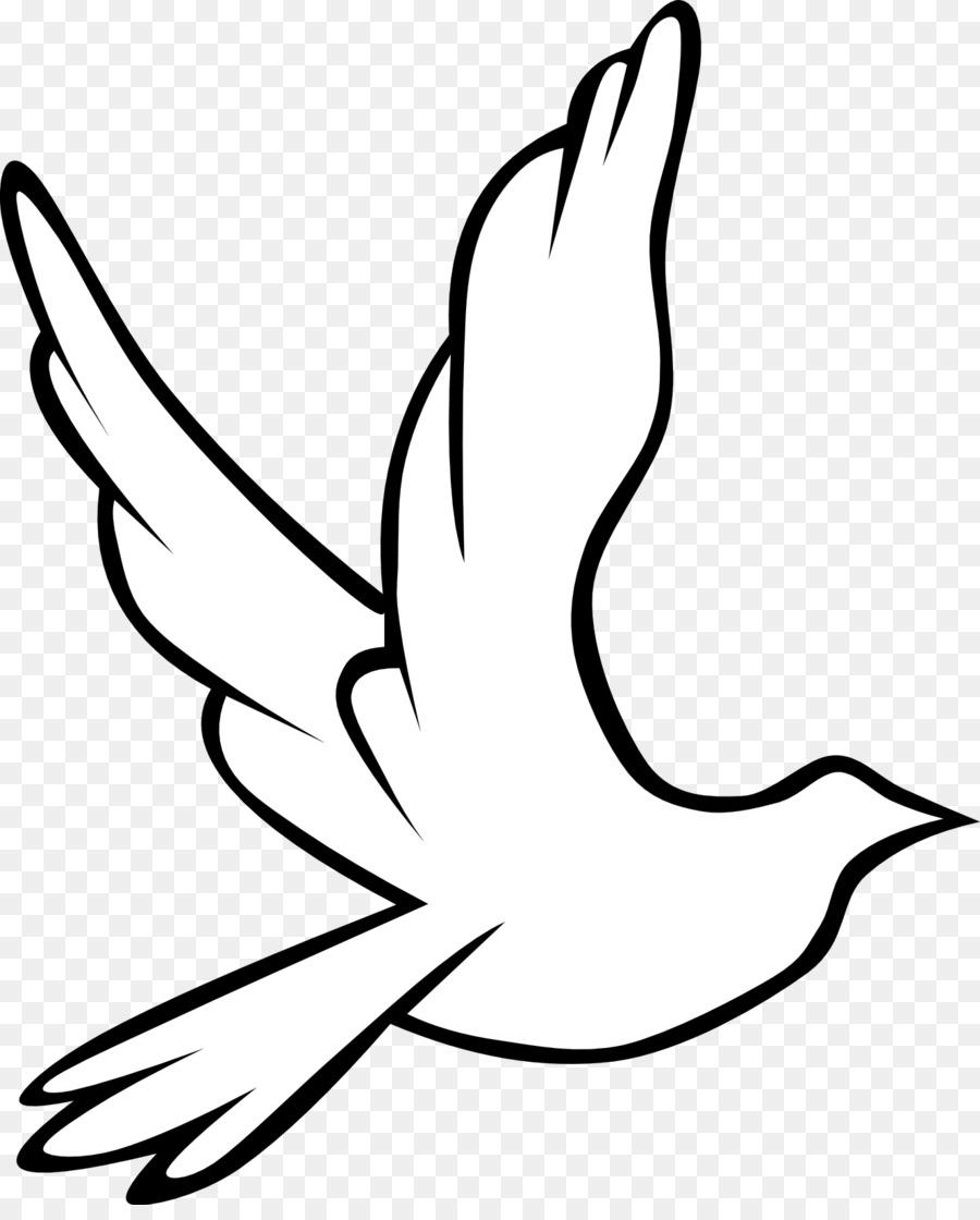 Fantail pigeon Columbidae Bird Release dove Clip art.