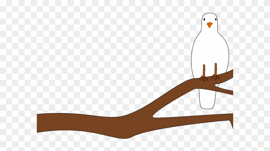 Mourning Dove Clipart Animated.