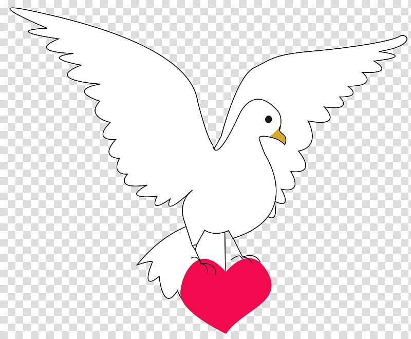 Columbidae Peace Doves as symbols , Animated Boxing Gloves.