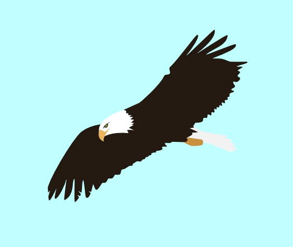 Animated Flying Eagle Clipart.