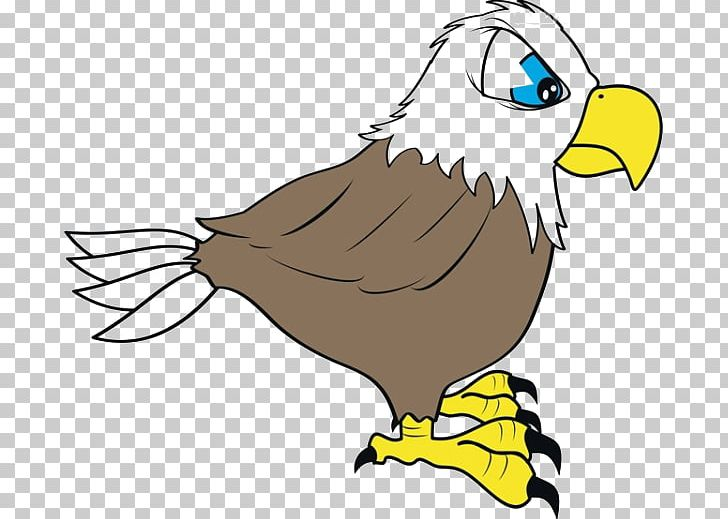 Bald Eagle Cartoon Drawing PNG, Clipart, Animals, Animated.