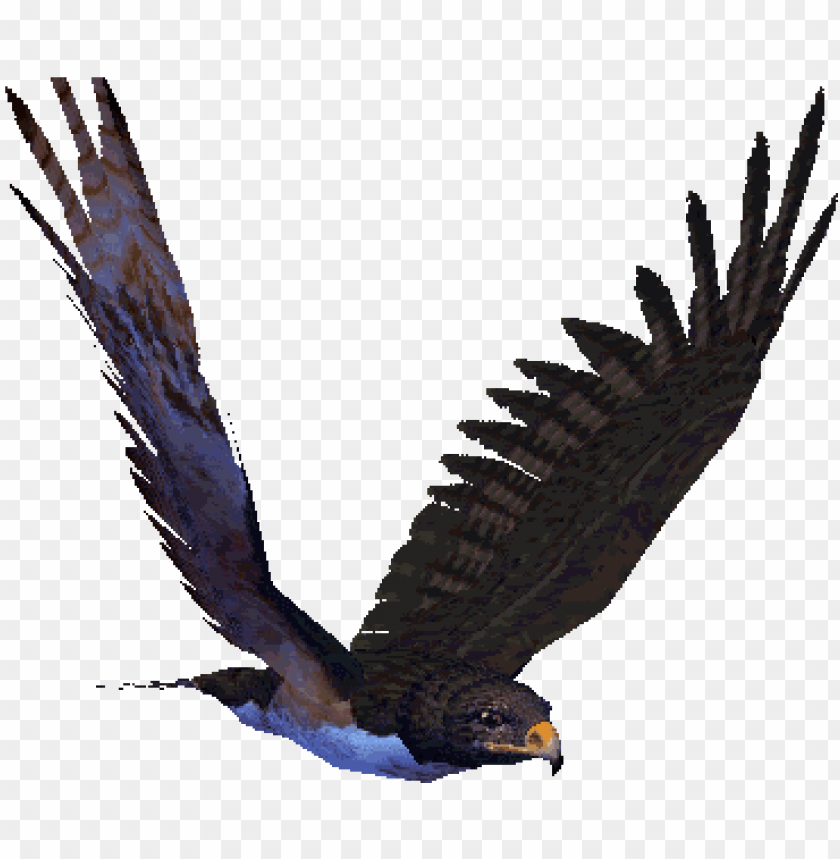 reat animated eagle gifs at best animations.
