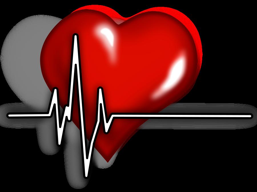 Free Flatline EKG Cliparts, Download Free Clip Art, Free.