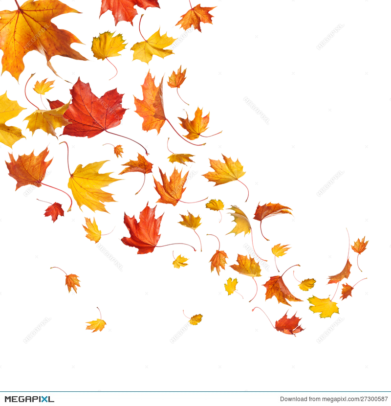 340 Falling Leaves free clipart.