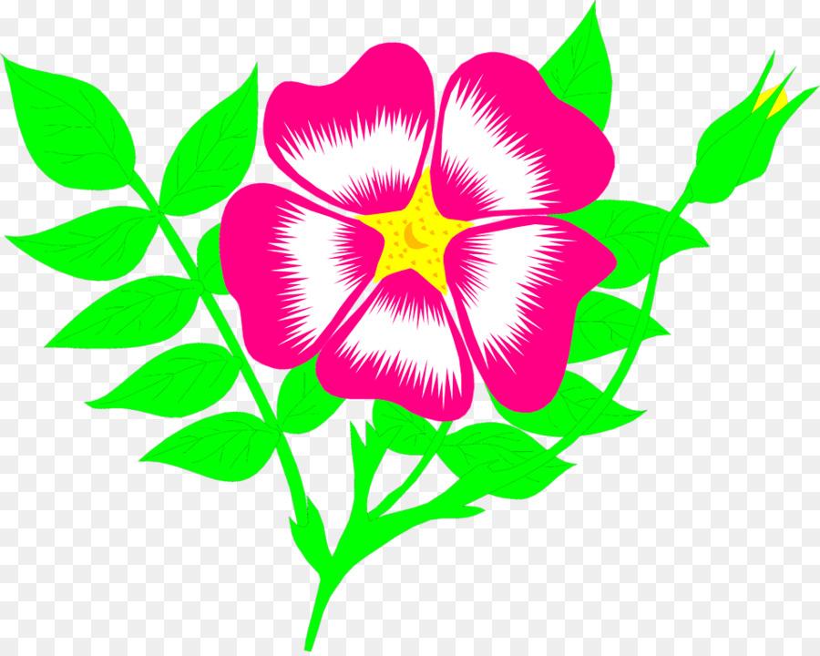 Floral Flower Backgroundtransparent png image & clipart free download.